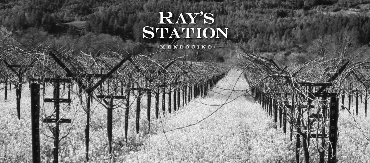 Rays Station Winery Image